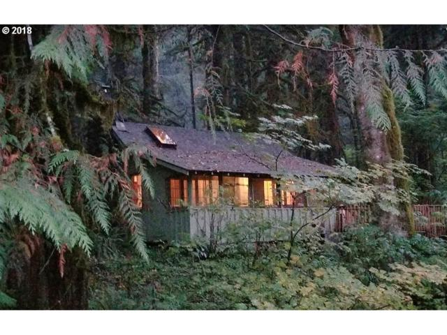 29007 E Road 20 Lot 62, Rhododendron, OR 97049 (MLS #18619808) :: Fox Real Estate Group