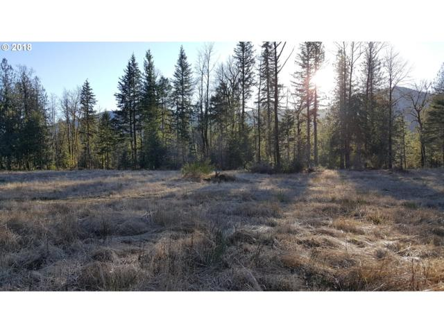 22534 E Brightwater Way, Rhododendron, OR 97049 (MLS #18620795) :: Hatch Homes Group