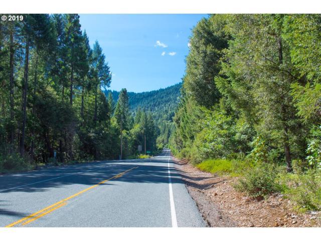 161 Little Grayback Rd, Cave Junction, OR 97523 (MLS #19037398) :: R&R Properties of Eugene LLC