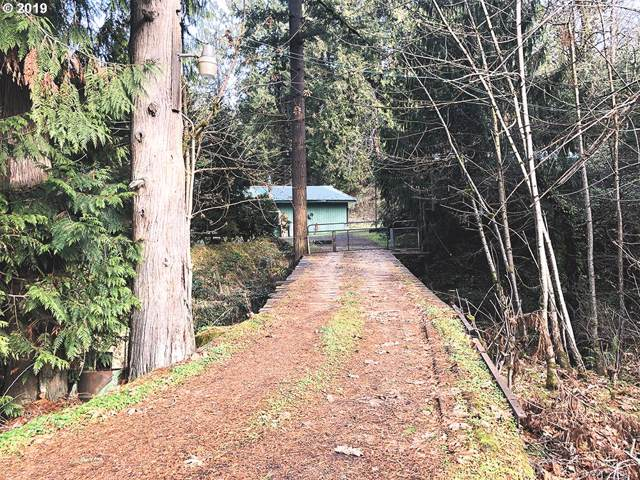 19556 S Creek Rd, Oregon City, OR 97045 (MLS #19126950) :: The Liu Group