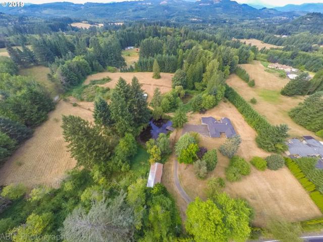 21306 NE Fargher Lake Hwy, Amboy, WA 98601 (MLS #19172315) :: Song Real Estate