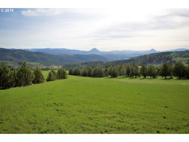 Hwy 26, Mitchell, OR 97750 (MLS #19190932) :: Gustavo Group