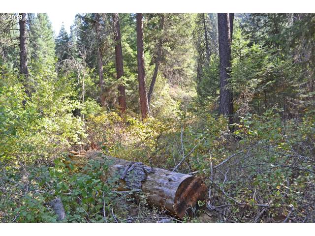 0 River Canyon Rd Way, Imnaha, OR 97842 (MLS #19443902) :: Townsend Jarvis Group Real Estate
