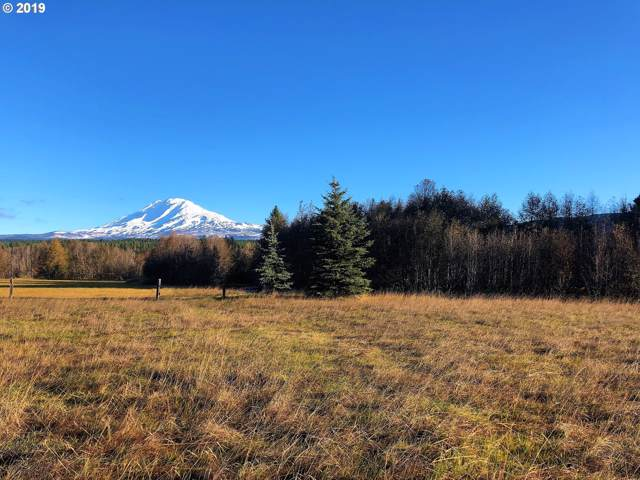 93 Sunnyside Rd, Trout Lake, WA 98650 (MLS #19455306) :: Townsend Jarvis Group Real Estate