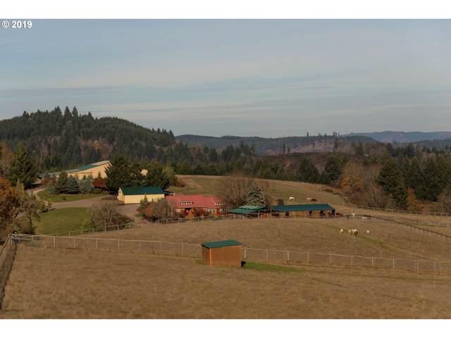 17346 NW Oak Ridge Rd, Yamhill, OR 97148 (MLS #19529525) :: McKillion Real Estate Group