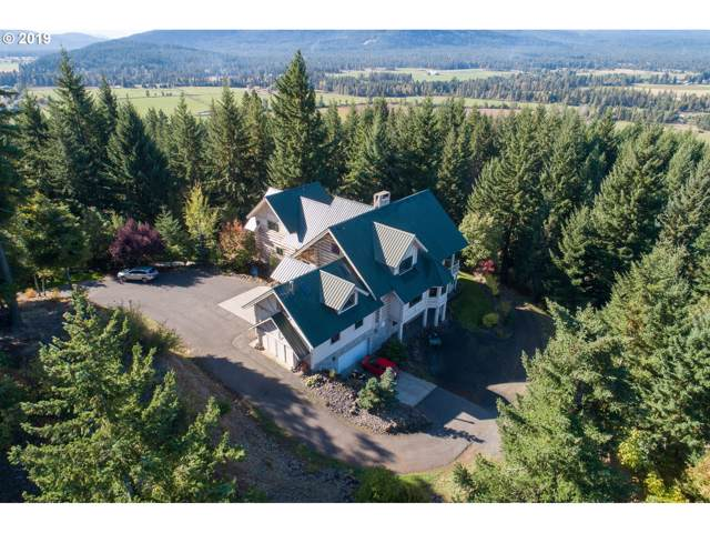 191 Sunnyside Rd, Trout Lake, WA 98650 (MLS #19570869) :: Townsend Jarvis Group Real Estate