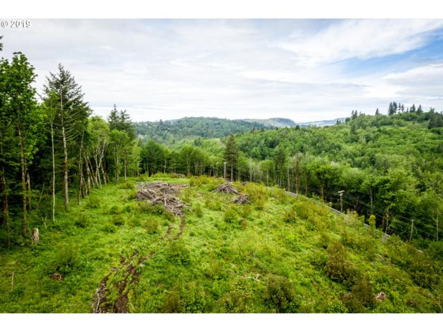 Mt Pleasant Rd, Washougal, WA 98671 (MLS #19602340) :: Townsend Jarvis Group Real Estate