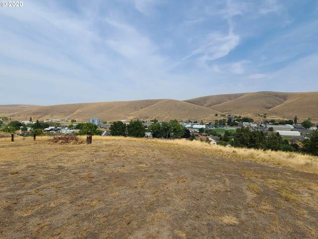 Willow View Dr, Heppner, OR 97836 (MLS #20087629) :: McKillion Real Estate Group