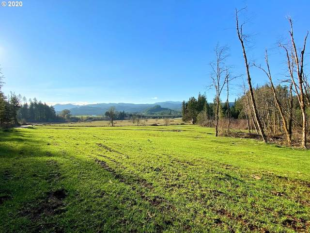 Hileman Rd, Marcola, OR 97454 (MLS #20234670) :: Change Realty