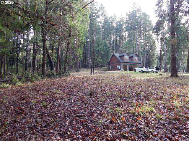 401 Indian Bend Rd, Umpqua, OR 97486 (MLS #20248438) :: Townsend Jarvis Group Real Estate