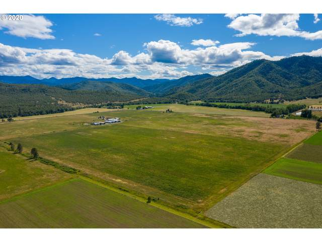 10282 Hwy 234, Gold Hill, OR 97525 (MLS #20264871) :: Piece of PDX Team