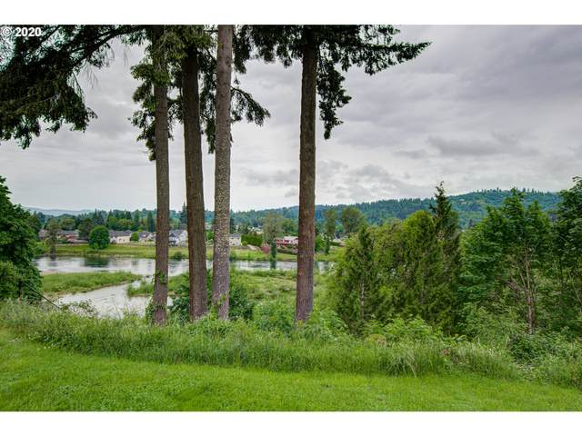 4620 NW 411TH Cir, Woodland, WA 98674 (MLS #20266240) :: Next Home Realty Connection