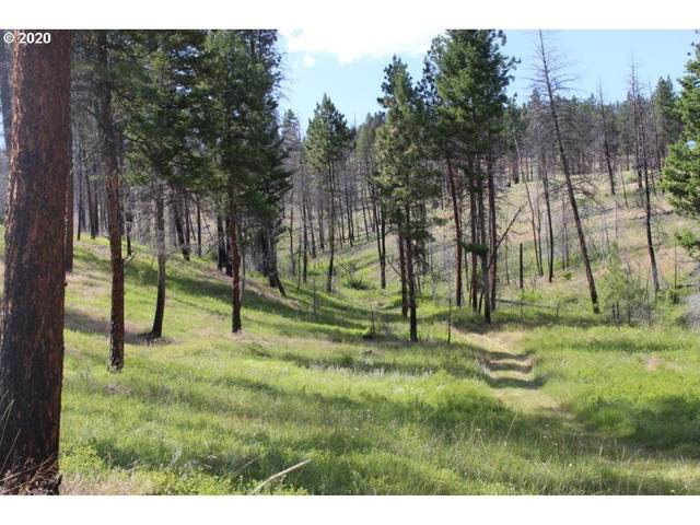 0 Corral Gulch Rd, Canyon City, OR 97820 (MLS #20324571) :: Beach Loop Realty