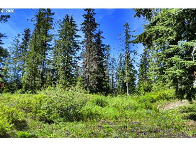 90011 E Morrison Ln, Government Camp, OR 97028 (MLS #20332647) :: Holdhusen Real Estate Group