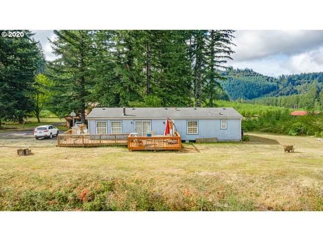 21638 NE Basket Flat Rd, Battle Ground, WA 98604 (MLS #20543119) :: Lux Properties