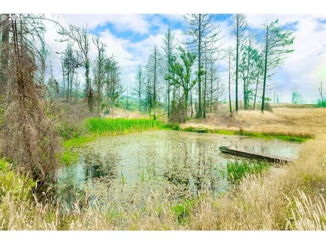 1262 Rock Creek Rd, Idleyld Park, OR 97447 (MLS #21078359) :: Premiere Property Group LLC