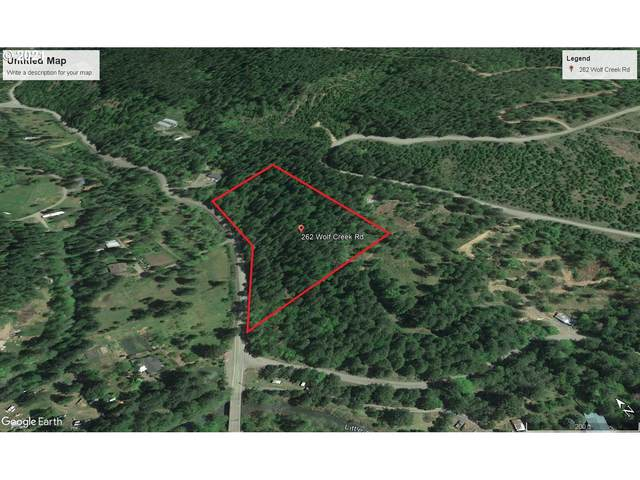 262 Wolf Creek Rd, Glide, OR 97443 (MLS #21203436) :: Premiere Property Group LLC