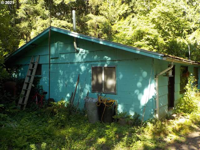 25207 SE Sunshine Valley Rd, Damascus, OR 97089 (MLS #21353557) :: Beach Loop Realty