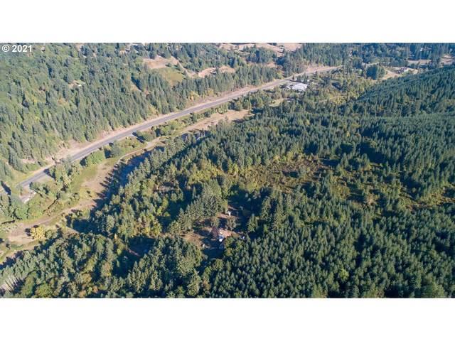 2025 Umpqua Highway 99, Drain, OR 97435 (MLS #21421511) :: Real Tour Property Group