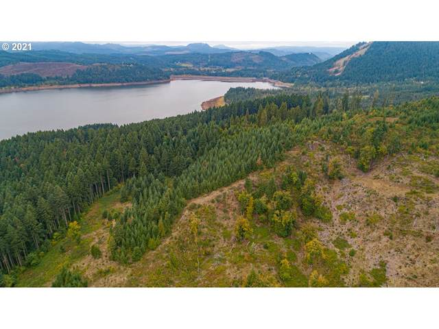 78312 Rat Creek Rd Next To, Cottage Grove, OR 97424 (MLS #21431880) :: Triple Oaks Realty