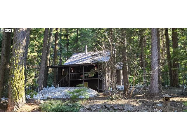 22633 Hwy 58, Crescent Lake, OR 97733 (MLS #21441486) :: Stellar Realty Northwest