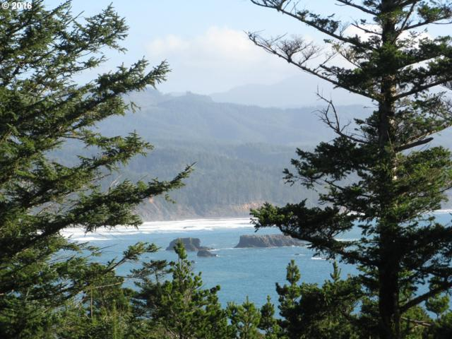 Spyglass Ln, Port Orford, OR 97465 (MLS #7004973) :: Hatch Homes Group