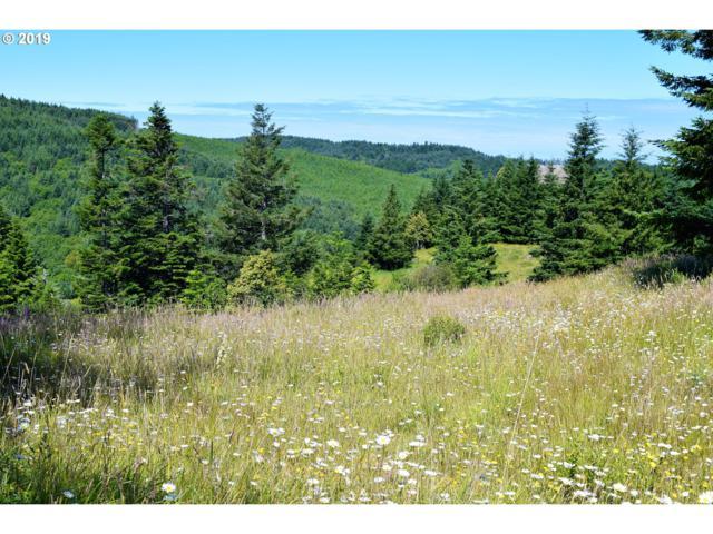 2804 Indian Hills Loop, Gold Beach, OR 97444 (MLS #15259171) :: R&R Properties of Eugene LLC