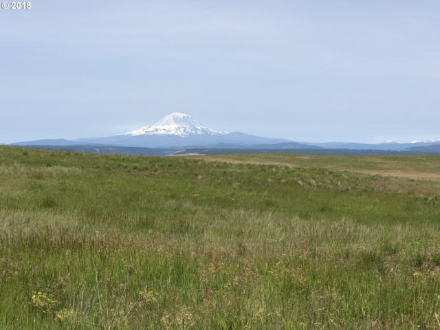 Shull Ranch Rd 4 B, Goldendale, WA 98620 (MLS #17250105) :: Next Home Realty Connection