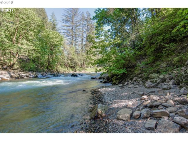 0 NE 353rd Ave, Washougal, WA 98671 (MLS #18323709) :: Townsend Jarvis Group Real Estate