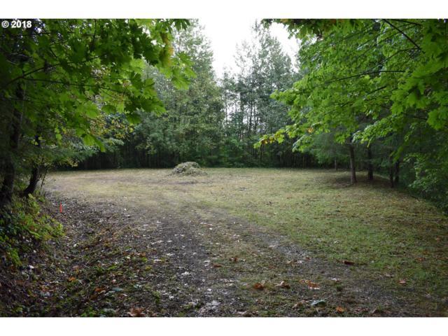 200 Hawks View Rd, Woodland, WA 98674 (MLS #18476229) :: TLK Group Properties