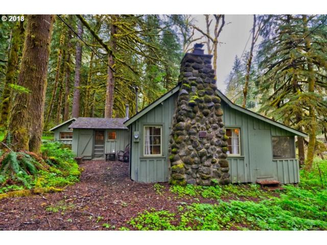 29007 E Road 20 Lot 62, Rhododendron, OR 97049 (MLS #18619808) :: Team Zebrowski