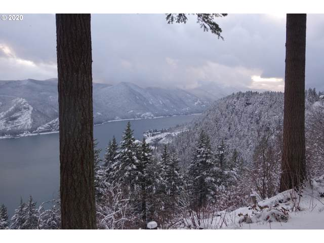 Ericson View, Underwood, WA 98651 (MLS #20170352) :: Song Real Estate
