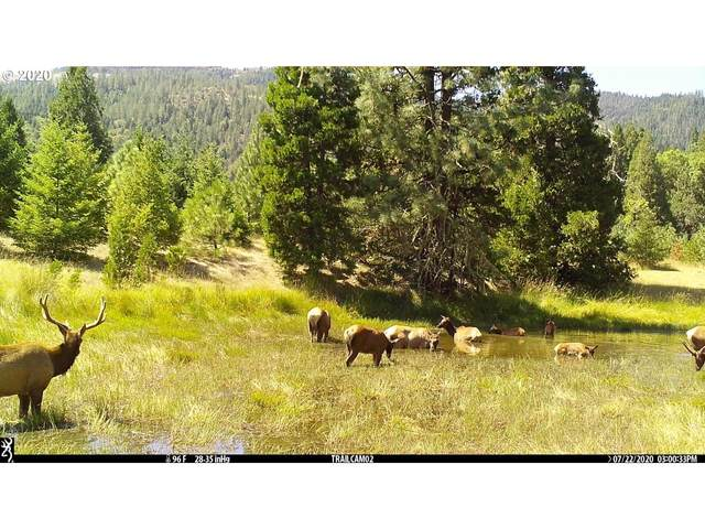 0 Riddle Bypass Rd, Riddle, OR 97469 (MLS #20430938) :: Holdhusen Real Estate Group