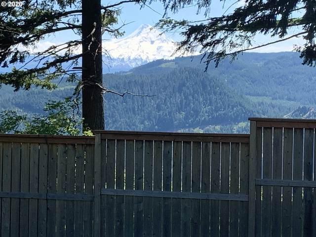 Ericson View 1&2, Underwood, WA 98651 (MLS #20609253) :: Stellar Realty Northwest