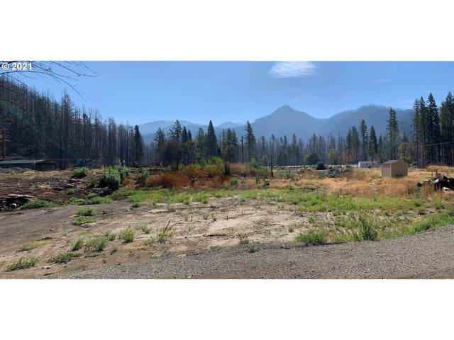 51724 Rose St, Blue River, OR 97413 (MLS #21199436) :: The Haas Real Estate Team
