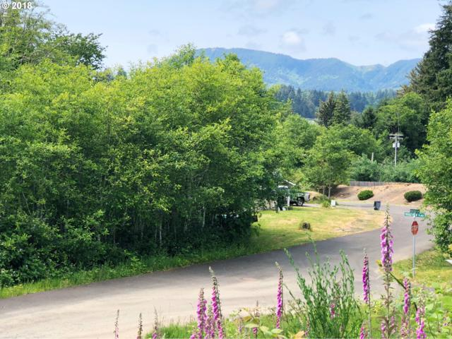 Ridgeview Ct, Wheeler, OR 97147 (MLS #17382331) :: Townsend Jarvis Group Real Estate