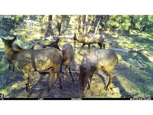 200 Wolf Creek, Paulina, OR 97751 (MLS #17603304) :: RE/MAX Integrity