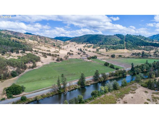 15084 Tiller Trail Hwy Hwy, Days Creek, OR 97429 (MLS #18001367) :: The Dale Chumbley Group