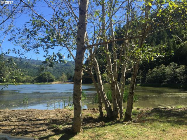 Libby Creek Rd, Gold Beach, OR 97444 (MLS #16319400) :: Hatch Homes Group