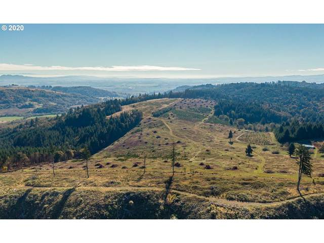 13479 SW Dupee Valley Rd Tl500, Sheridan, OR 97378 (MLS #20655998) :: McKillion Real Estate Group