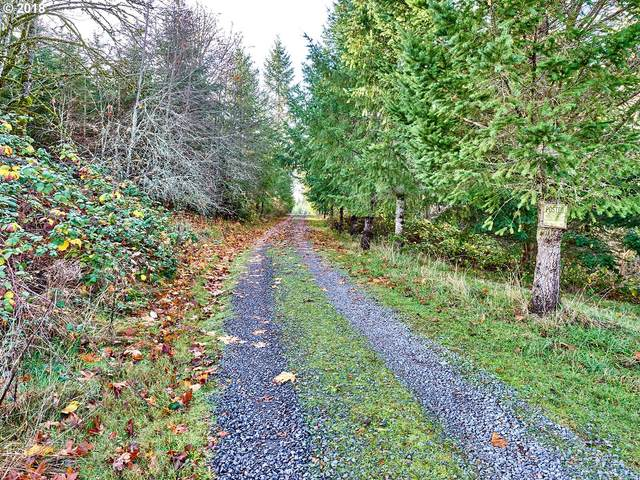 35517 S Aqua Springs Rd, Molalla, OR 97038 (MLS #18320042) :: Change Realty