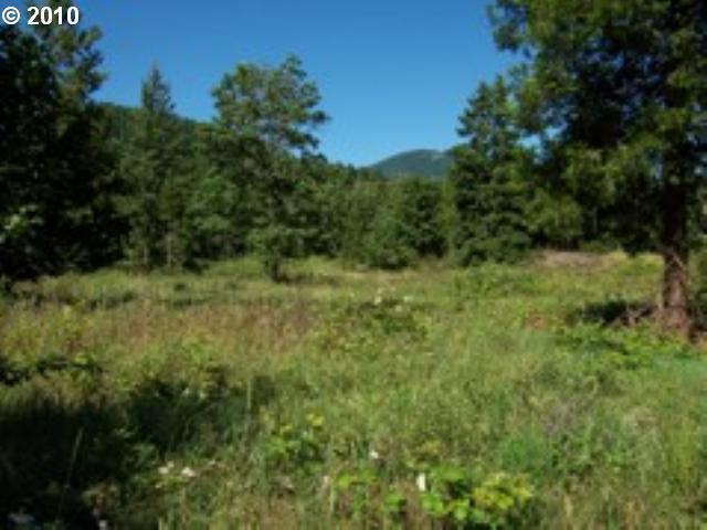 E End Of Jasper Dr, Oakridge, OR 97463 (MLS #10019038) :: Song Real Estate