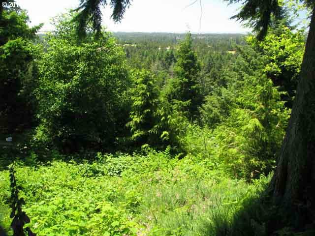 Ocean View Dr, Florence, OR 97439 (MLS #11661214) :: Cano Real Estate