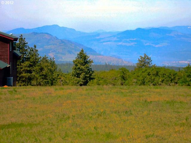 Seven Mile Hill Rd, Mosier, OR 97040 (MLS #12137006) :: Hatch Homes Group