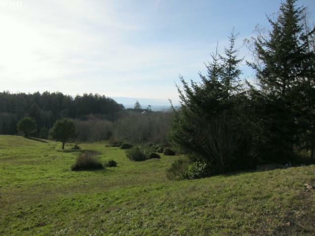 57 Meadowview Ln, Pacific City, OR 97135 (MLS #12310312) :: Duncan Real Estate Group