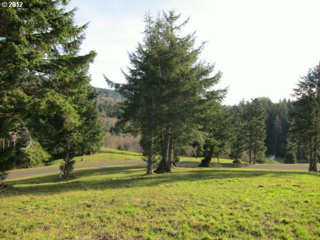 51 Meadowview Ln, Pacific City, OR 97135 (MLS #12318486) :: Song Real Estate