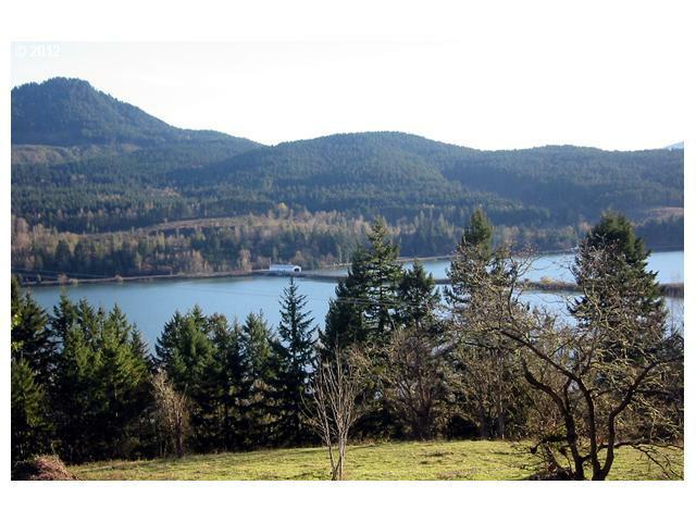 530 Sunridge Ln #30, Lowell, OR 97452 (MLS #12624504) :: Song Real Estate