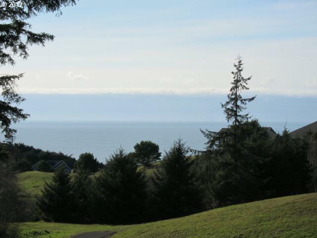 53 Meadowview Ln, Pacific City, OR 97135 (MLS #12629105) :: Song Real Estate