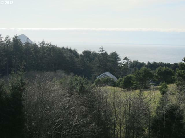 39 Southview Loop, Pacific City, OR 97135 (MLS #12665626) :: Song Real Estate