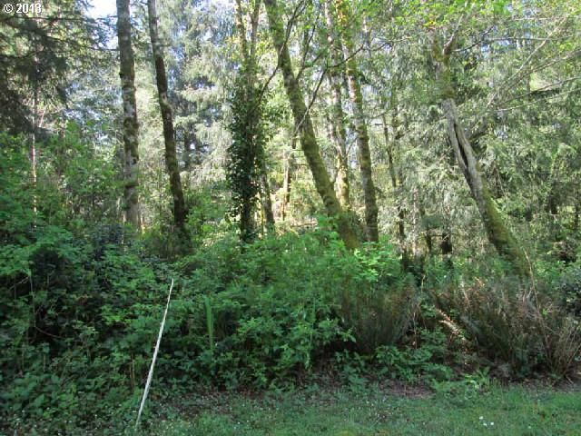 Maple Ln #2, Florence, OR 97439 (MLS #13391606) :: Cano Real Estate